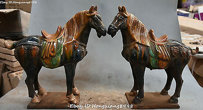 """13"""" Chinese Ancient Tang San Cai Pottery Porcelain Horse Horses Animal Statue"""