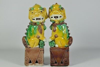 Pair Fine Old China Chinese Famille Rose Porcelain Foo Dog Scholar Art