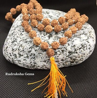 Rudraksha 7Mm Untreated Japa Mala Rosary 108+1 Bead Yoga Hindu Prayer Meditation