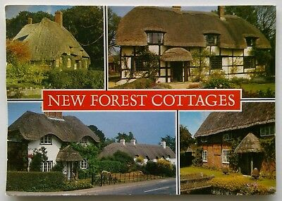 New Forest Cottages 1996 Postcard (P297)