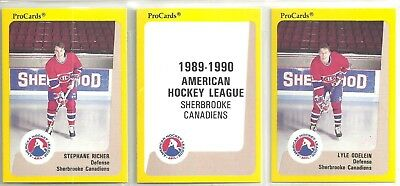 1989-90 Pro Cards 23 card AHL Sherbrooke Canadiens Hockey Team Set   S Richer