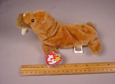 Ty Beanie Baby Babies Paul the Walrus Mint with Tags MWT NWT 1999