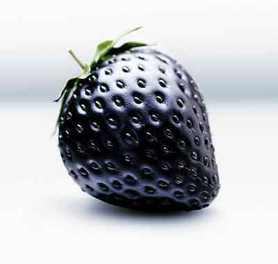 Black Strawberries Strawberry Seeds Fruits Rare - UK Stock - BUY 2 GET 1 FREE