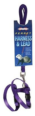 Marshall Pet Products Ferret Harness & Lead Set - PURPLE