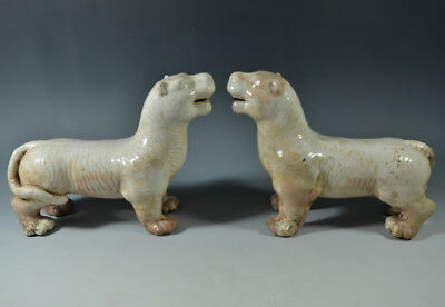 """Wonderful China Ancient White Glazed Porcelain Pair Of Tiger Statues 9.84"""""""