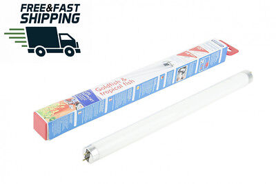 Interpet Community Daylight Fluorescent Tube for Tropical and Coldwater...