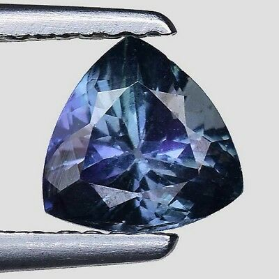 1.090 Cts TREMENDOUS TOP LUSTER! BLUE NATURAL TANZANITE TRILLION LOOSE GEMSTONES