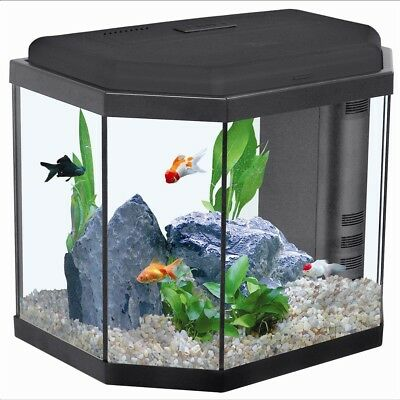 """Fully Stocked Dropshipping FISH AQUARIUMS Website Store. """"300 Hits A Day"""""""