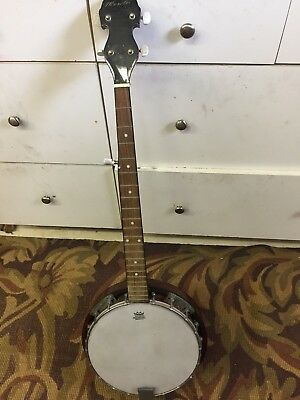 Old Banjo Needs  Repair