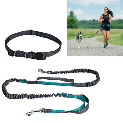 Reflective Hands Free Dog Lead Running Jogging Waist Belt Training Bungee Leash