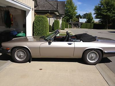Jaguar: XJS 2 Door Jaguar convertible, CA car in BC
