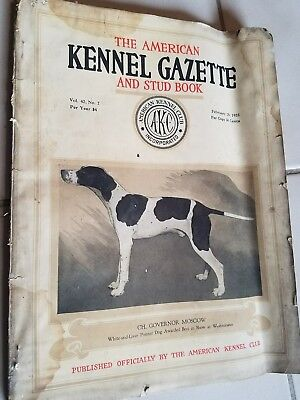 1925 the AKC  American Kennel Gazette and Stud DOG book POINTER