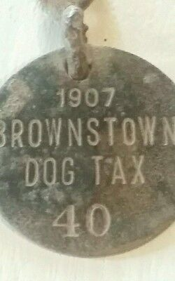 1907 dog tax tag