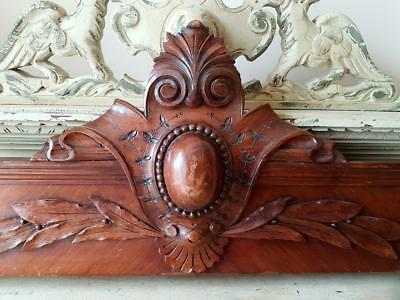 Stunning 19thC Antique French Carved Oak Architectural Pediment-Laurel & Berries