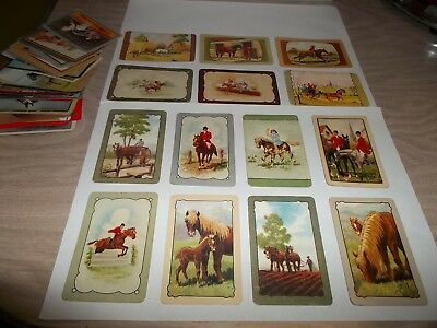 Collectable Lot Of Vintage  Coles & Other Swap Cards Of Horses - 39 X  In Total.