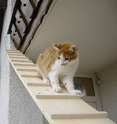 Elmato Cat Stairs without Connection