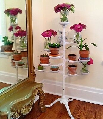 Antique multi-arm plant stand, charming! Victorian, french, lovely!