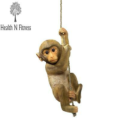 Design Toscano Chico the Chimpanzee Baby Monkey Hanging Animal Statue, 16 Inch,