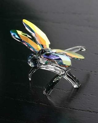 Swarovski Crystal Dragonfly 5005062 Mint Boxed Retired Rare