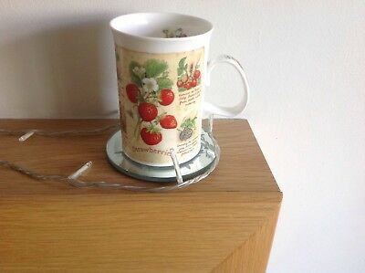 Dunoon Bone China Cultivated Fruit Mug by Richard Partio