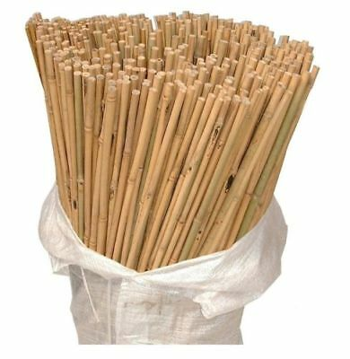 Heavy Duty Natural Wooden Bamboo Canes Plant Support Garden Canes Pole Thick 4ft