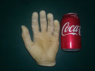 VTG Plaster REALISTIC LEFT HAND Painted Department Store MEDICAL DISPLAY mold