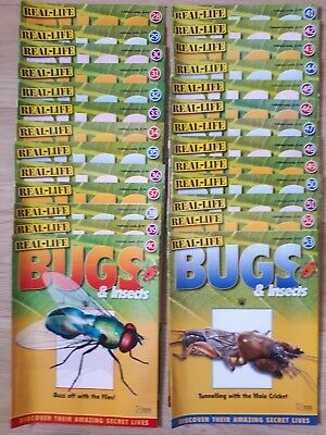 real life bugs and insects magazines 28 to 53