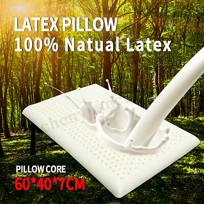 100% Natural Bedding Latex Pillow Comfort Bed Sleeping Contour Support Cover