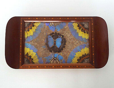 Stunning Art Deco Inlaid Wood Pressed Butterfly Serving Tray Iridescent Blue