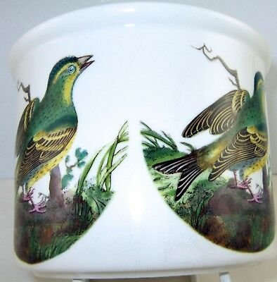 """Portmeirion Birds of Britain PLANT POT HOLDER 4"""" NEW in BOXED Crested B/S"""