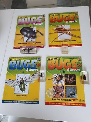Real life bugs and insects 54 to 57