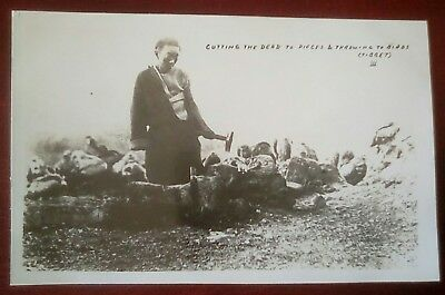 Cutting dead human to pieces throw to birds Tibet China real photo postcard iii