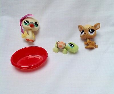 Littlest Pet Shop #996 Swan, #983 Kangaroo and #984 Turtle with Accessories.