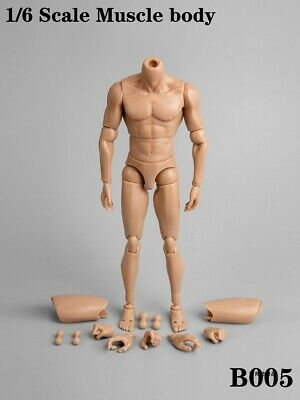 "1/6 Scale B005 Male Narrow Shoulder Nude Muscle Body F 12"" Figure In Stock"