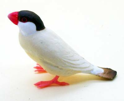 Shine-G sparrow figure collection Java sparrow finch cinnamon US seller new