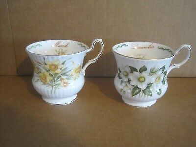 2 Queens Fine Bone China Cups Flowers Months March December