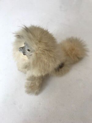 Antique Russian Spitz Dog For Display With French Fashion Doll, Borzoi Dog
