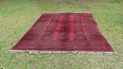Large Room Size Antique Suleyman Turkoman Carpet Aq Char Region