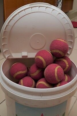 38 Sticky Wicky Balls Great for Learning Cricket Batting