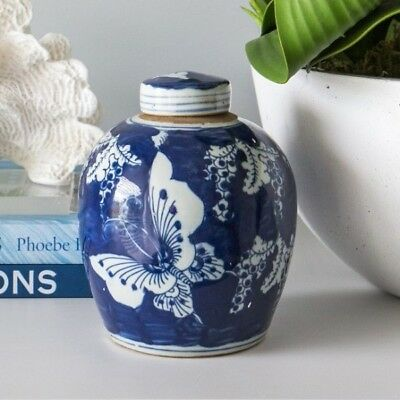 Hamptons Coastal Style Blue and White Butterfly Ginger Jar