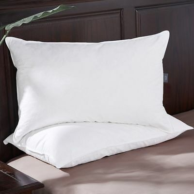 White Goose Feather and Down Pillow Pair Standard Size Soft Cotton Cover