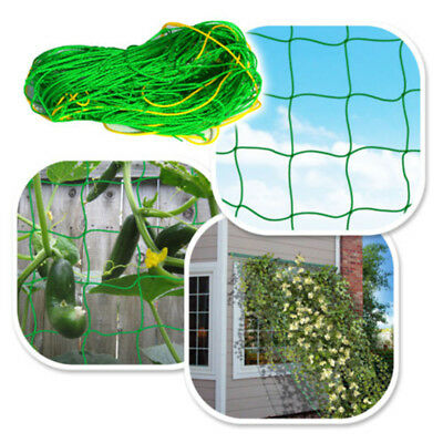 St Garden Green Nylon  Netting Support Climbing Bean Plant Nets Grow Fence By