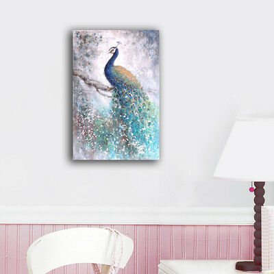 50×80×3cm Framed Canvas Prints One Colorful Peacock Wall Art Home Decor