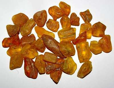 Genuine Baltic amber - Very nice pieces - The best price