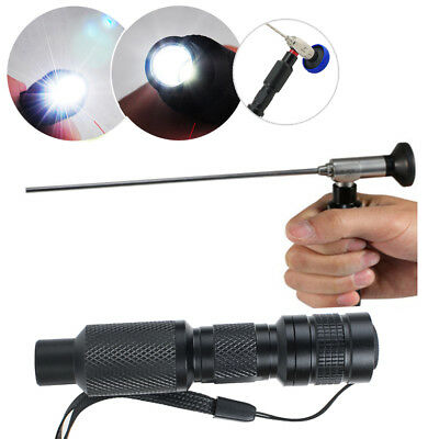 Portable LED Cold Light Source Endoscopy 10W Fit Sinuscope Otoscope Laparoscopy