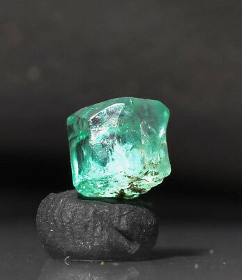 Natural Colombian Muzo Emerald Green Crystal specimen Gem rough