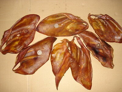 XXL PIGS EARS - superb A*** 50 SOWS EARS (2x25)   RRP £2+ each = £100+