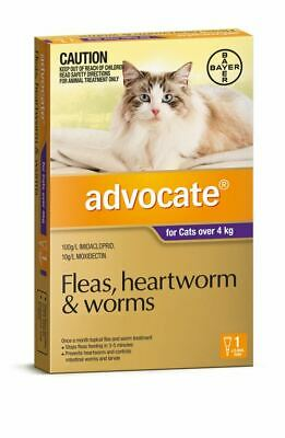 Advocate for Large Cats over 4 kg - 1 Pack