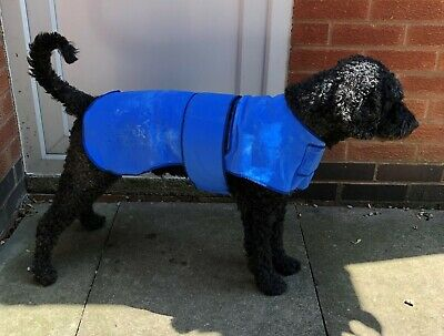 High Performance Cooling Coats For Dogs & Cats