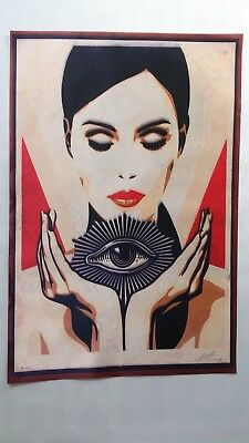 Shepard Fairey - Invisible to the Eye